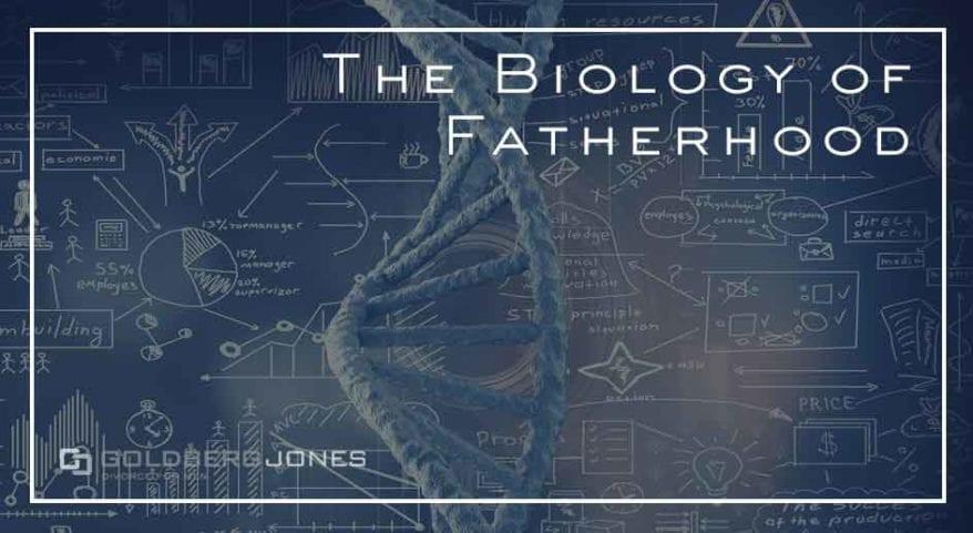 paternity and fatherhood
