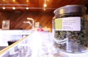 how does marijuana affect child custody